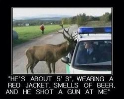 he-shot-a-gun-at-me-deer-cop.jpg