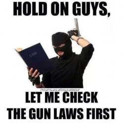 checkinggunlaws.jpg