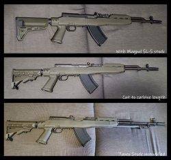 sks evolution.jpg