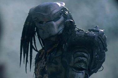 predator-11-22-33.jpg