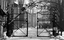 Auschwitz_3177355b.jpg