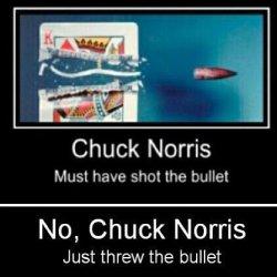 9a802d42a38b26dc86ce93fd1b075b15--chuck-norris-funny-bullets.jpg