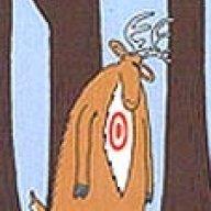 Woody365